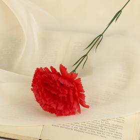 Цветы искусственные гвоздика 37 см красный Ош