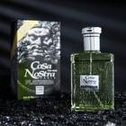 Туалетная вода Cosa Nostra Platinium Intense Perfume, мужская, 100 мл