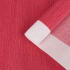 Бумага креп, с белым верхом, цвет красный, 0,5 х 2,5 м