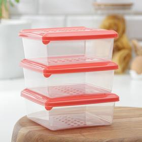 Набор пищевых контейнеров 500 мл Pattern, 3 шт, цвет МИКС