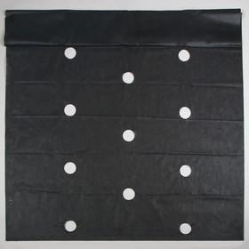 Материал мульчирующий, с перфорацией, 10 × 1,6 м, плотность 60, с УФ-стабилизатором, чёрный, «Агротекс» Ош