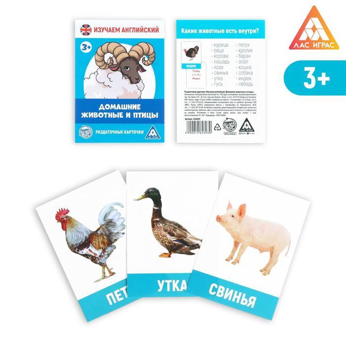 Обучающие карточки «Изучаем английский. Домашние животные и птицы», 16 штук, 3+