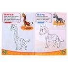 Раскраска «Животные южных стран», 12 стр. - Фото 3
