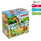 Кубики картонные «Африка», 4 штуки, по методике Монтессори - Фото 1
