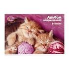 Блокнот для рисования А5, 24 листа на скрепке «Милые котята»