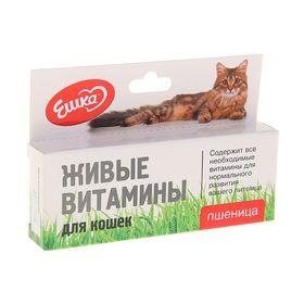 Живые витамины «Ешка» Пшеница для кошек, 20 г Ош