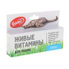 Живые витамины «Ешка» Овёс для кошек, 20 г