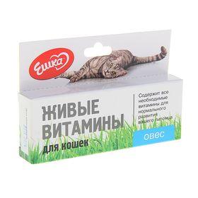 Живые витамины «Ешка» Овёс для кошек, 20 г Ош