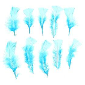 Набор перьев для декора 10 шт., размер 1 шт: 10 × 4 см, цвет голубой Ош