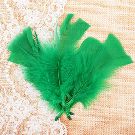 Набор перьев для декора 10 шт., размер 1 шт: 10 × 4 см, цвет светло зелёный Ош