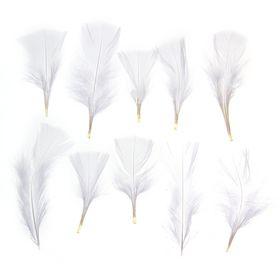 Набор перьев для декора 10 шт., размер 1 шт: 10 × 4 см, цвет белый Ош