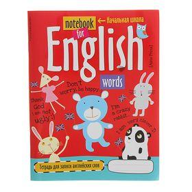Тетрадь для записи английских слов в начальной школе «Мишка», 24 листа, обложка мелованный картон
