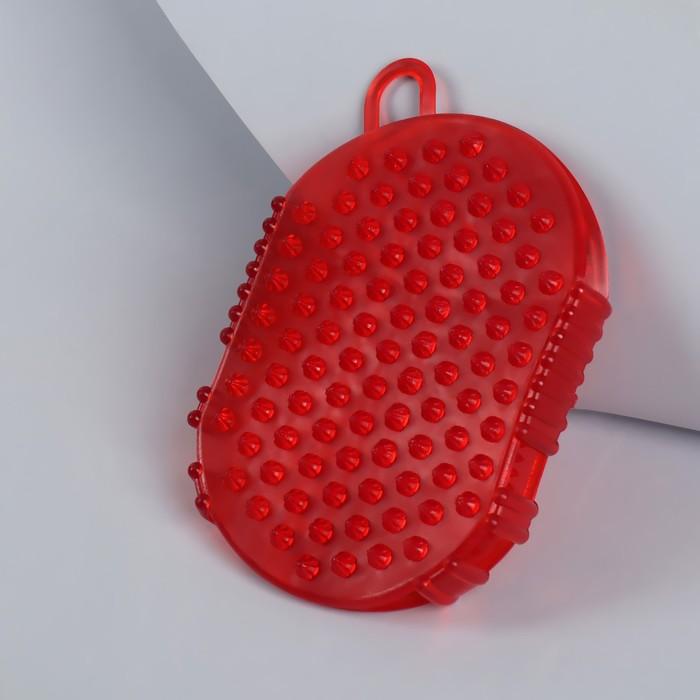 купить Массажёр антицеллюлитный Чудо-варежка, с подвесом, цвет МИКС