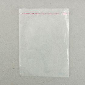 Пакет с липкой лентой 12,5 х 16,5/4 см, с отверстием Ош