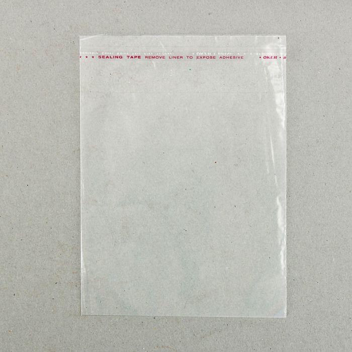Пакет с липкой лентой 12,5 х 16,5/4 см, с отверстием