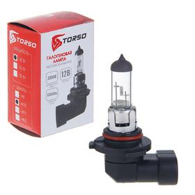 Галогенная лампа TORSO H10, 3300 K, 12 В, 42 Вт Ош