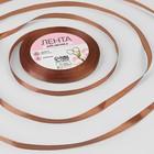 Лента атласная, 6 мм ? 23 ± 1 м, цвет коричневый №30