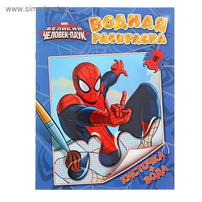 """Водная раскраска Marvel """"Человек-паук"""" (1321050) - Купить ..."""