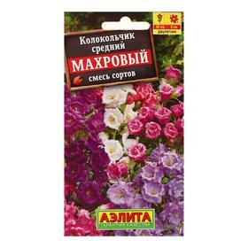 Семена цветов Колокольчик 'Махровый', смесь окрасок, Дв, 0,2 г Ош