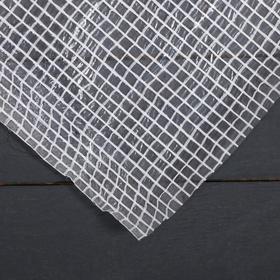 Плёнка полиэтиленовая, армированная, толщина 120 мкм, 2 × 22 м, белая, Эконом 15% Ош