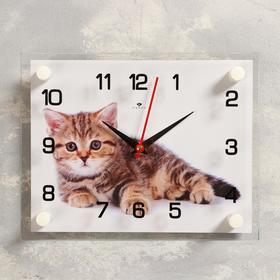 Часы настенные, серия: Животный мир, 'Котенок', 20х26  см, микс Ош