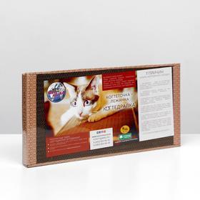 Домашняя когтеточка-лежанка для кошек 50 x 25 (когтедралка)
