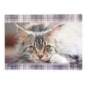 Накладка на стол, пластик, 339 х 224 мм, «Мой кот» Ош