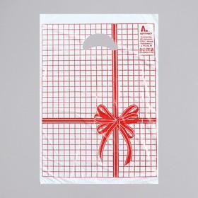 Пакет 'Красная клетка', полиэтиленовый с вырубной ручкой, 22 х 30 см, 12 мкм Ош