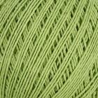 Зелёный 2504