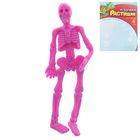 Детский набор для опытов «Растущие фигурки. Скелет», цвета МИКС - Фото 4