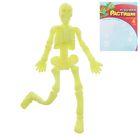 Детский набор для опытов «Растущие фигурки. Скелет», цвета МИКС - Фото 6
