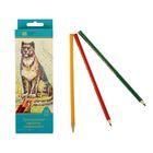 Карандаши 18 цветов, «Сибирский Кедр. Дикие кошки», трёхгранные, длина 175 мм, ok 6.9 мм