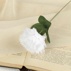 Цветок искусственный 'Белая гвоздика' Ош