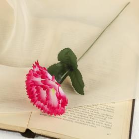 Цветок искусственный 'Гвоздика' розовая Ош