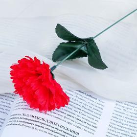 Цветы искусственные 'Гвоздика 25 см, красная Ош