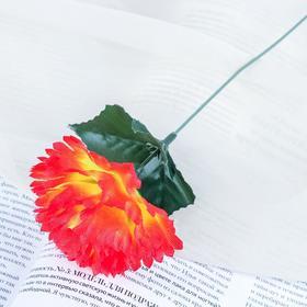 Цветы искусственные 'Гвоздика 25 см, оранжевая Ош