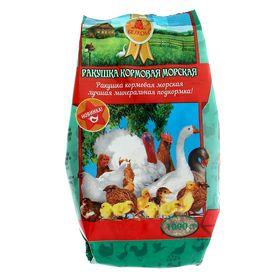 Ракушка кормовая морская для сельскохозяйственных животных и птиц, 1 кг Ош