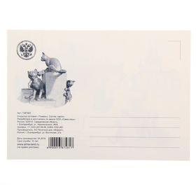 пришлось день почтовой открытки сценарий тьма, приближением полуночи