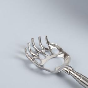 Чесалка «Лапа», с раздвижной ручкой, 21/58 см, цвет МИКС