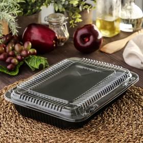 Контейнер с крышкой одноразовый для суши Коррекс, 24×19×5 см, 1,74 л, цвет чёрный