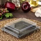 Контейнер одноразовый для суши 18,5×15,5×3,5 см, 790 мл, 100 шт/уп, цвет чёрный