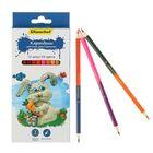 Карандаши 12 штук, 24 цвета, двухцветные, «Пластилиновая коллекция»