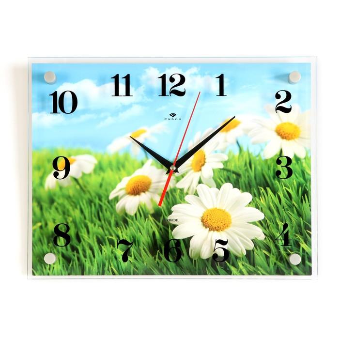 """Часы настенные, серия: Цветы, """"Ромашки"""" 30х40  см, микс"""