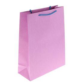 Пакет подарочный 32 х 25 х 10 см, фиолетовый Ош