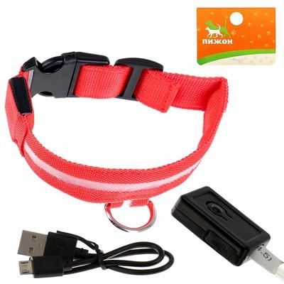 Ошейник с подсветкой, зарядка от USB, до 38 см, 3 режима свечения, красный