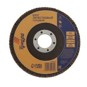 Круг лепестковый торцевой TUNDRA basic, 115 х 22 мм, Р80 Ош