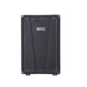 Пассивная акустическая система Soundking KJ10, 200Вт Ош