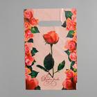 """Пакет """"Розовая дымка"""", полиэтиленовый с вырубной ручкой, 20 х 30 см, 30 мкм"""