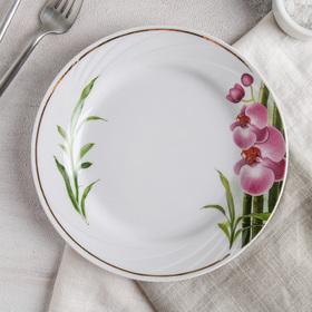 Тарелка мелкая «Бамбуковая орхидея», 20 см