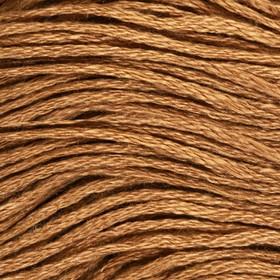 Нитки мулине, 8 ± 1 м, цвет тёмно-песочный №3045 Ош